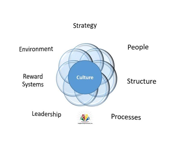 OD/Talent Management
